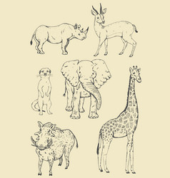 vintage safari animals vector image