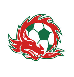 Welsh dragon soccer ball vector