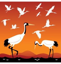 Flying cranes vector