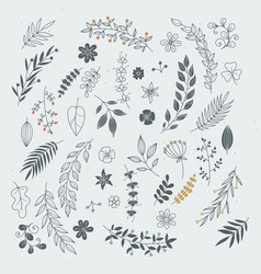 Rustic hand drawn ornaments with branches and vector