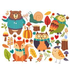 Animals forest cartoon vector