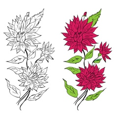 Colorful Flower Ornament vector image