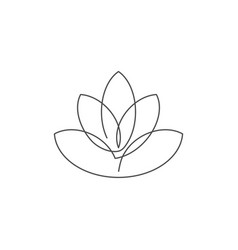 flower lotus continuous line vector image