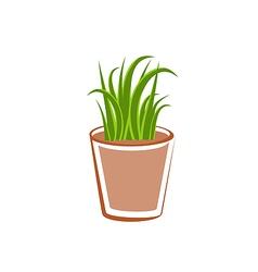 Flowerpot with green grass plants vector