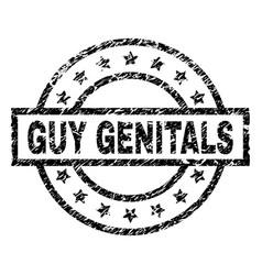 Grunge textured guy genitals stamp seal vector
