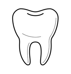 icons of tooth in thin line style vector image