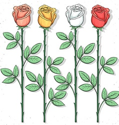 Isolated roses handmade in sketch style Sketch of vector image