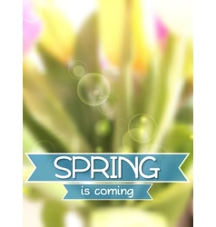 Spring background Blurred tulips bouquet vector image
