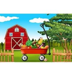 Vegetables on the farm vector