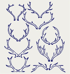 Deer horns vector image vector image