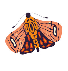 colorful hand drawn moth on white background vector image