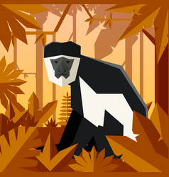 Flat geometric jungle background with colobus vector