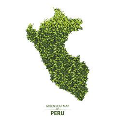 Green leaf map peru a forest vector