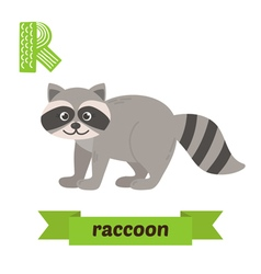 Raccoon R letter Cute children animal alphabet in vector image