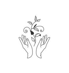 Two hands hold floral plant with leaves vector
