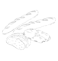 Hand drawing of different breads vector image vector image
