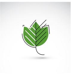 spring maple tree leaf botany and eco flat image vector image
