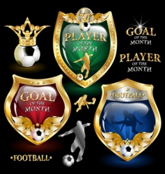 football emblem vector image
