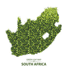 Green leaf map south africa a vector