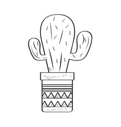 isolated cactus sketch vector image