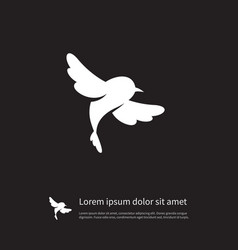 isolated sparrow icon fowl element can be vector image