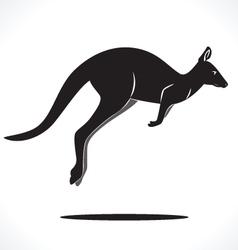 kangaroo 5 vector image