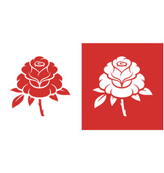 red rose flower vector image