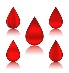 Set blood drops with reflections different vector image