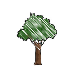Tree forest natural environment wood vector