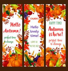 autumn season banner set with fall harvest frame vector image