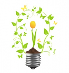 bulb with plant of tulip vector image