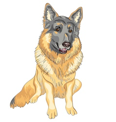 dog German shepherd breed smile vector image