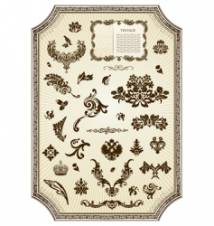 floral vintage royal design element vector image