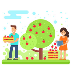 A happy family collects apple crops vector