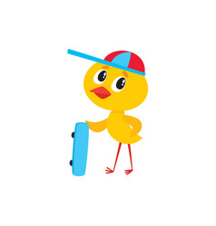 cute baby chicken boy character holding skateboard vector image