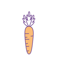 Delicious and health carrot vegetable vector