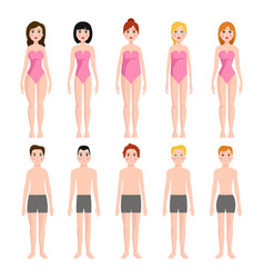 Different body shape types vector