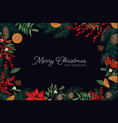 elegant frame or border made of branches and cones vector image