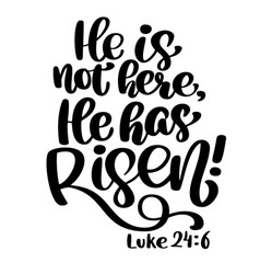 hand drawn he has risen luke 24 6 text on white vector image