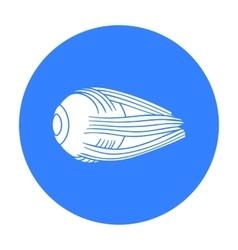 Human eyeball icon in black style isolated on vector
