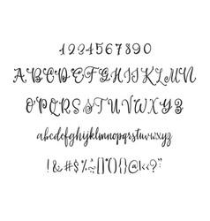 modern calligraphy vintage handwritten font vector image