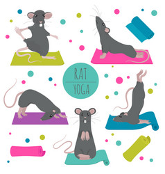 Rat yoga poses and exercises cute cartoon clipart vector