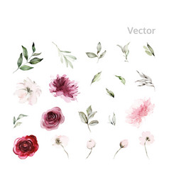 set watercolor flowers for cards vector image