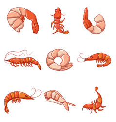 Shrimp prawn cooked icons set cartoon style vector