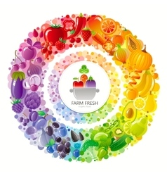 Vegetarian rainbow plate withe fruits vegetables vector image