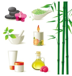 highly detailed spa icons set vector image vector image