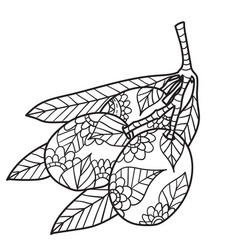 Coloring pages for adults black ink hand vector