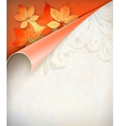 Autumn Corner Card vector image