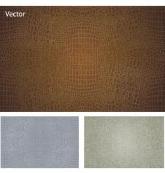 Crocodile skin texture vector image