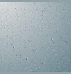 drops of water rain or shower drops isolated on vector image